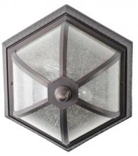 Melissa Lighting K33/WHT - Exterior Flushmount, White Finish, Seedy Glass