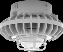 RAB Lighting HAZXLED42F-DG - HAZLED 42W COOL LED CEILING FROSTED GLOBE DIE CAST GUARD GRAY