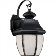 Quoizel NYL8409K - Newbury LED Outdoor Lantern
