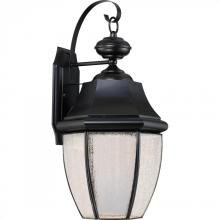 Quoizel NYL8411K - Newbury LED Outdoor Lantern