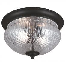 Sea Gull Canada 7826402BLE-12 - Fluorescent Garfield Park Two Light Outdoor Ceiling Flush Mount in Black with Clear Glass