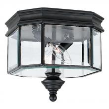 Sea Gull Canada 8834-12 - Two Light Outdoor Ceiling Flush Mount