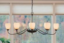 Hubbardton Forge 101308-SKT-03-GG0083 - Oval Large 8 Arm Chandelier